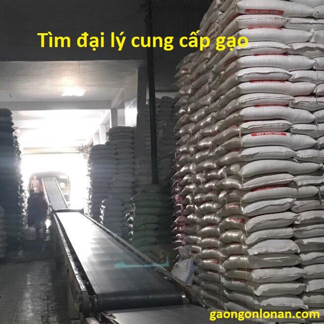 Tìm đại lý cung cấp gạo