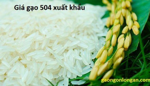 giá gạo 504 xuất khẩu