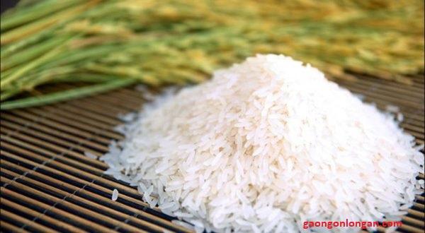 Gạo st25 gạo đặc sản Sóc Trăng